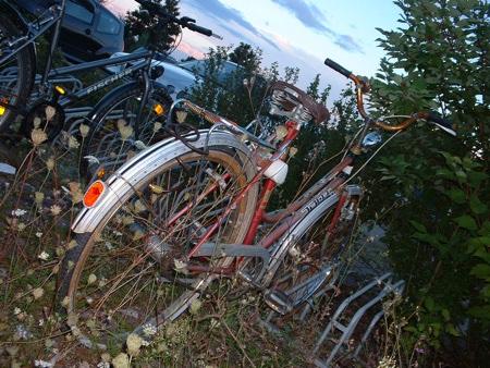 fahrradleiche.jpg